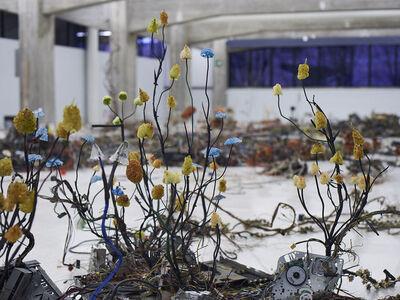 Kristof Kintera, 'Postnaturalia', 2017
