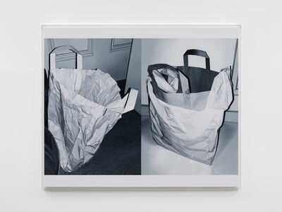 James White, 'Double Bag', 2020