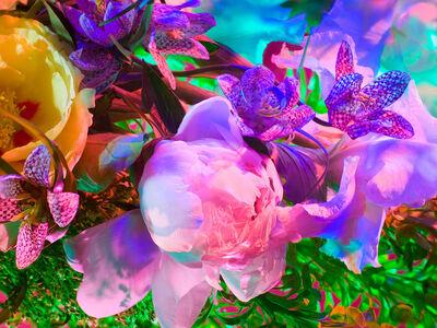 Torkil Gudnason, 'Electric Blossom #1721', 2012
