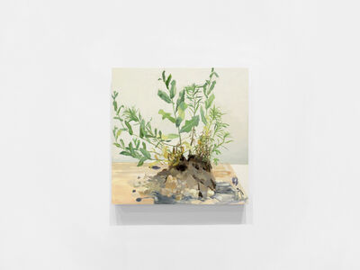 Kristin Musgnug, 'Prickly Lettuce and Mare's Tails from Gravel Parking', 2017