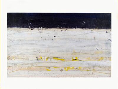 Don Maynard, 'Wave Landscape', 2006
