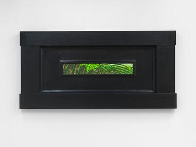 Neil Jenney, 'North American Vegetae', 2007