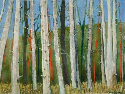 Ellen Sinel, 'Woods', 2013