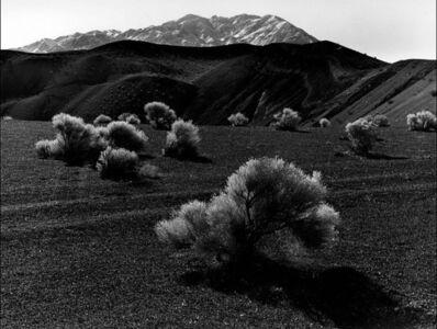 Brett Weston, 'Nevada Desert', ca. 1980