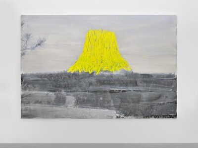 Tursic & Mille, 'Landscape and Yellow', 2014