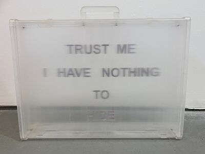 Davis Birks, 'Trust Me; I have nothing to Hide', 2010