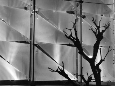 Reem Al Faisal, 'From the Series Japan ', 2010