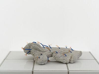 Zhang Ruyi 張如怡, 'Individual Plant—2', 2018