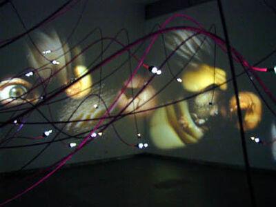 Daniel Canogar, 'Dermal Thresholds', 2001