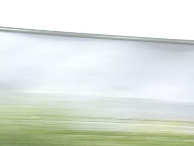 Suzette Bross, 'White & Foliage', 2008