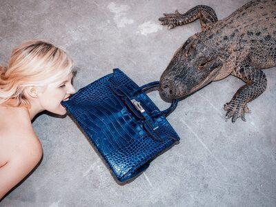 Tyler Shields, 'Gator Birkin III', 2012