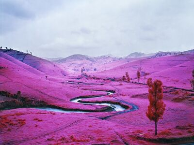 Richard Mosse, 'Platon', 2012