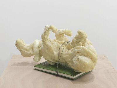 Adel Abdessemed, 'Cheval arabe (2 - on green book vol. 2)', 2011