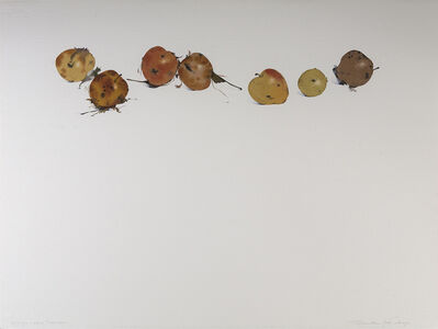 Susan Headley Van Campen, 'Frozen Apples, November', 2018