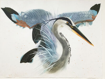 Scott Kelley, 'Great Blue Heron, wings raised', 2009