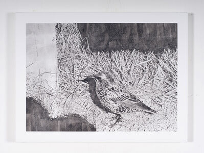 Martin Bennett, 'Static Image Painting/Grey/Starling/Away From The Murmuration/The Stonehenge Parking Lot/Britain', 2015