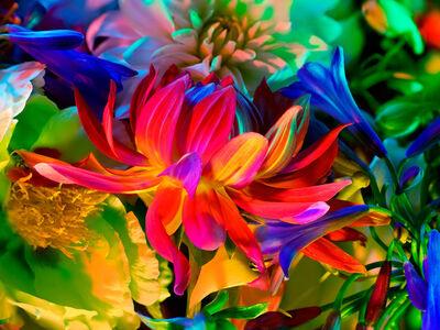 Torkil Gudnason, 'Electric Blossom #363', 2012