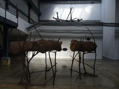 Giuseppe Penone, 'Tra...', 2008