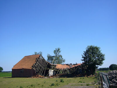 Lara Almarcegui, 'Ruins in the Netherlands (single)', 2008