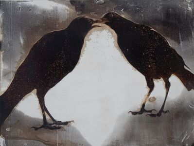 James Griffith, 'Crows', 2019