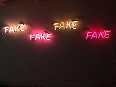 Teresa Escobar, 'Fake Fake Fake Fake', 2019