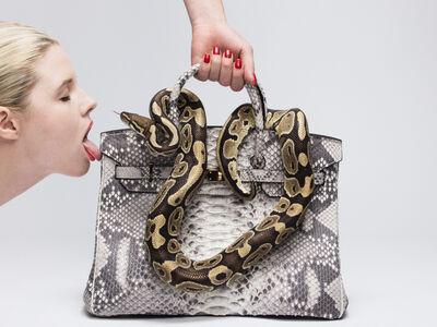 Tyler Shields, 'Python Birkin Kiss', ca. 2016