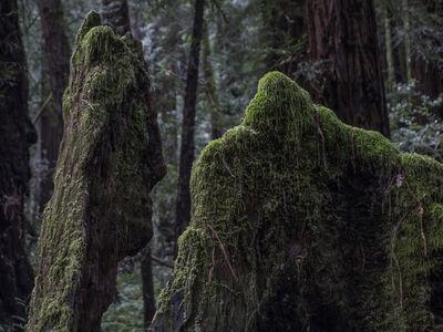 Peter Vanderwarker, 'San Francisco', 2014