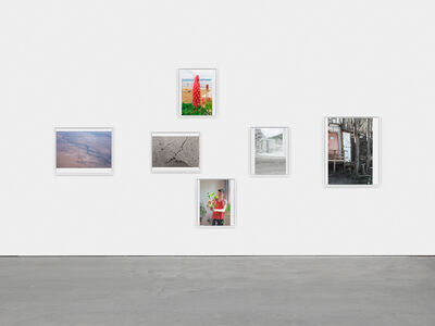 Wolfgang Tillmans, 'Mineral / Vegetal', 2019