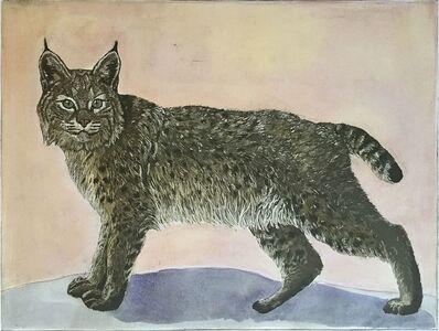 Julia Lucey, 'Bobcat', 2015