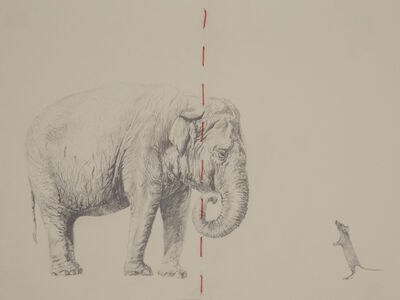 Carlos Alarcón, 'Paradox Series - Elephant and Mouse', 2020