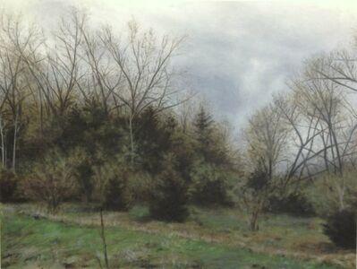 Ann E. Coulter, 'Oak Hill', 2014