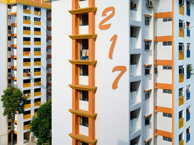 Peter Steinhauer, 'Block #217, Singapore - 2013', 2013