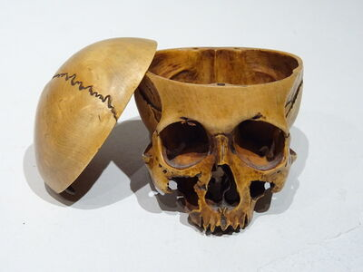 Unknown, 'Boxwood Skull', 17th Century