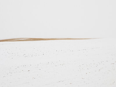 Josef Hoflehner, 'Winter Prairie, Wyoming'