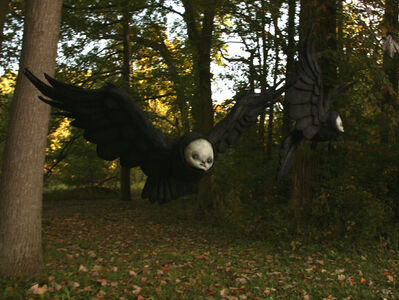 Scott Radke, 'Ravens', 2018