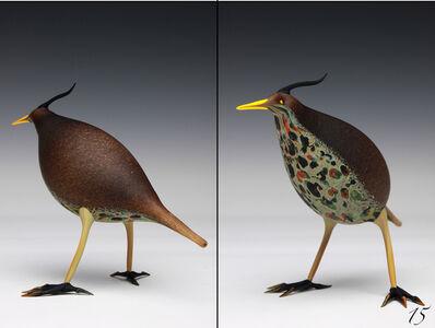 Shane Fero, 'Bird #15', 2013
