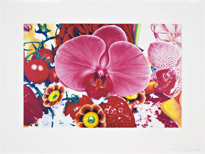 Marc Quinn, 'Untitled 01 from Six Moments of Sunrise on the Ganges Delta', 2008