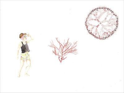 Laura Salguero, 'Amundsen VI', 2014