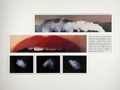 Bill Beckley, 'Deirdre's Lip', 1978