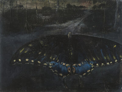 Miles Cleveland Goodwin, 'Butterfly and Lightning ', 2016