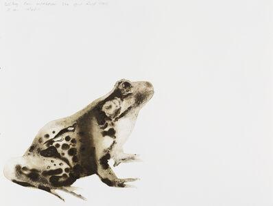 Alexis Rockman, 'Bullfrog (Rana catesbeiana)', 2014