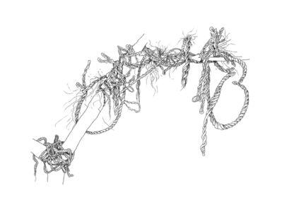 Donna Conlon, 'Ropes and Mangroves #9', 2020