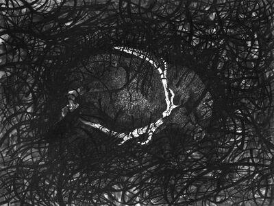 Matt Miley, 'Inundate / Surface; Cataract Inundate Series', 2013