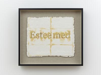Nari Ward, 'Esteemed', 2018-2019