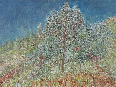 Mao Xuhui 毛旭辉, 'Guishan, Gum Tree Forest No.1', 2010