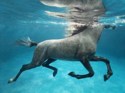 Vanessa von Zitzewitz, 'Underwater 1, Doha', 2009