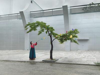 Julia Fullerton-Batten, 'Ikebana', 2013