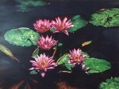 Jerry Ott, 'Untitled (nympheas diptych #3) ', 2003