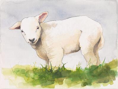 Nick Lamia, 'Lamb'