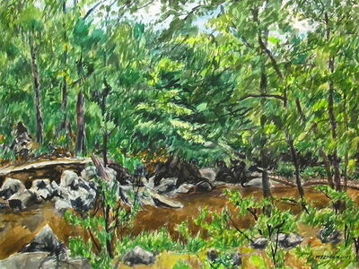 Richard Fitzhugh, 'Rocks and Creek in Rock Creek Park'
